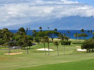 Maui Eldorado: Maui Condo A202, Ka'anapali