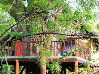 Mbuyu treehouse, Diani Beach