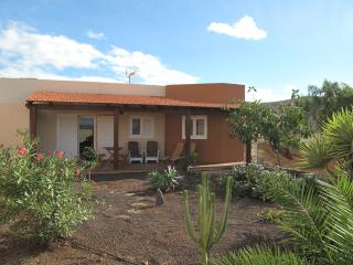 Magnifica Casa de Nico. Rodeada de Olivos.