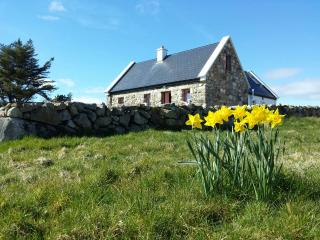 Artistic Cottage Retreat Connemara, Kilkieran