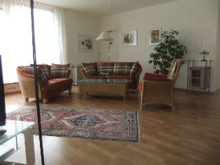Comfortable holiday apartment in the Black Forest, Alpirsbach