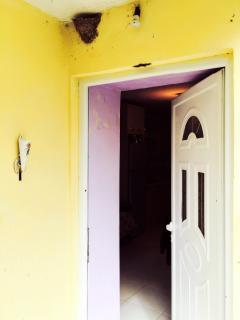 Lovely bird's house above the door