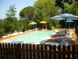 Beautiful holiday villa with pool for 15 guests, Sils