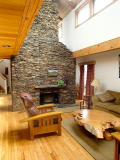 Fire place and chimney in shared living room.