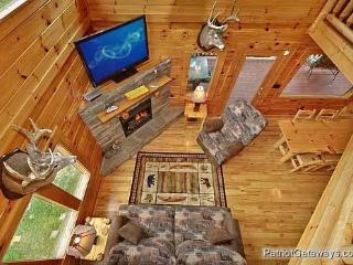 Living Room Overhead View of Wilderness Lodge