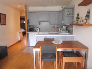 'MORGANE' 46 m², view Mont-Blanc, ctre town, parkg, Chamonix