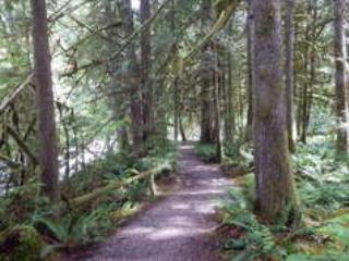 Snowater Community trail