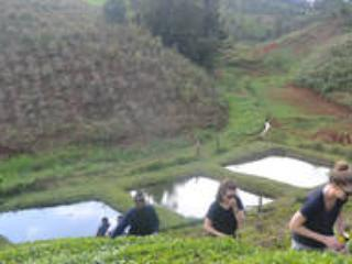 Fish ponds for fishing in the farm