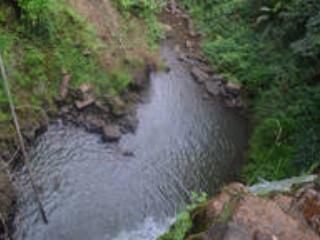 Waterfall in the farm