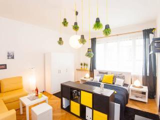 Design & Modern flat in city center, Praag