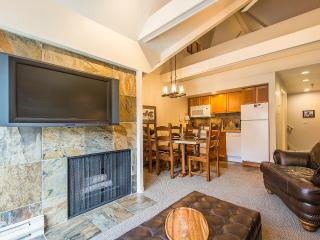 2BR/2BA SKI-IN/-OUT CONDO w SLOPESIDE SKI-RUN VIEW!