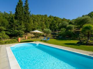 piscina#scala romana#verde#bosco#ombrellone#lettini#solarium#10x4#150h#godibile#relax#silenzio
