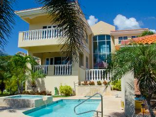 Castle Garden-Spectacular Luxury villa with Ocean view in Palmas del Mar resort (SC51), Humacao