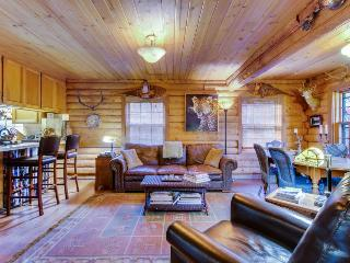 Unique dog-friendly  log cabin w/resort amenities like a shared pool & hot tub