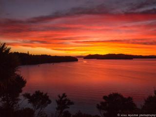 Nook Paradise, Whangarei Heads