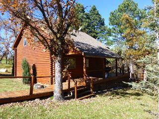 Trails End Cabin - new listing close to Deadwood!, Sturgis