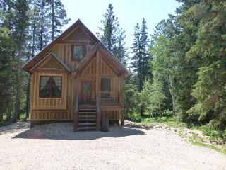 Snowed Inn Cabin, Lead