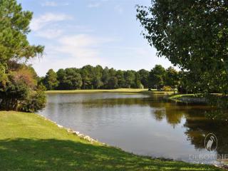 Fir,Tree,Outdoors,Pond,Water