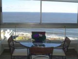 Wonderful Apartment in Punta Del Este, Uruguai, holiday rental in Maldonado Department