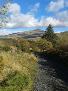 One of the walks on the doorstep of the lodge with a view of Mount Snowdon