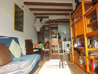 Cozy apartment in historical Born, Barcelona