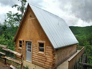 Mountainside cabin above the trees - Tree House, Bryson City