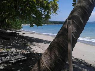Private Cabin 50 mt from the ocean - pvt beach, Cabuya