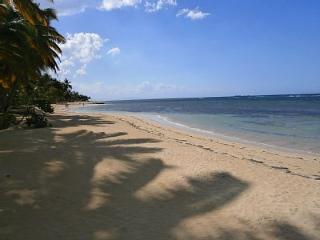 Front de mer avec vue playa Las Ballenas, piscine, Las Terrenas