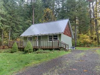 Lovely dog-friendly mountain cabin w/private hot tub! Just 400 feet to river!