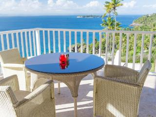 1 Bedroom Oceanview Condo at Vista Mare Samana