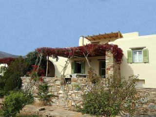 BEAUTIFUL STONE VILA GOLDEN BEACH PAROS