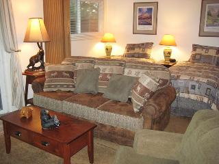 Living Room and Bed Area