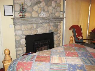Bed Area and Fireplace