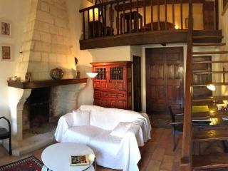 House Rental Provence - La Maison des Artistes
