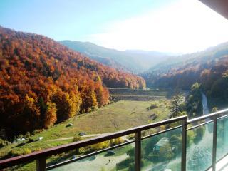 Modern Apartament, Large Terrace, Mountains view, Brasov