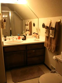 Master bath with shower / tub.  We provide the bubble bath!