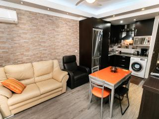 Modern apartment Malaga City Center