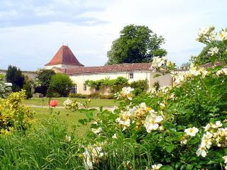 Domaine Serbise, Belluire
