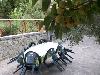 Trasimeno Villa with private pool up to 6 person