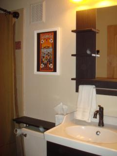 BATHROOMS: Extra Counter Space, Shelving, Hair Dryer