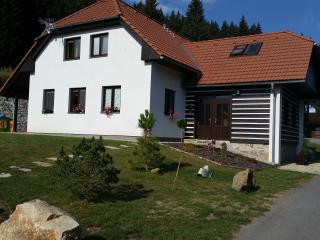 Apartments Vltavice - Sumava
