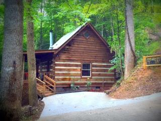 Newly Remodeled - Mountain Adventure, Townsend