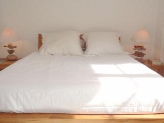 Appartement calme avec jardinet à Montpellier