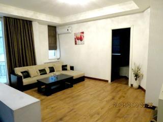 Luxury 2 Bedrooms Apartment in Tbilisi Center, Tiflis