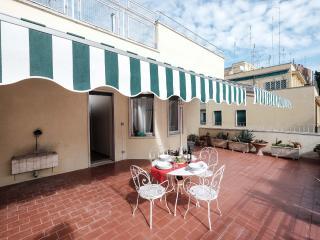 Bright Terrace Penthouse