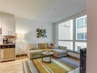 Modern, dog-friendly getaway w/ shared sky lounge & gym, near waterfront!
