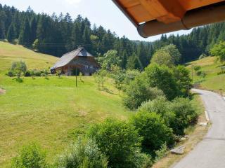 Vacation Apartment in Bad Rippoldsau-Schapbach -  (# 9095)