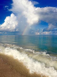 Spectacular Beach @ Ocean Daze