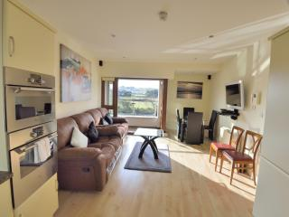 Luxury Riverbank Apartment Louisburgh Westport