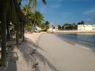 Key Colony Beach FL - Cay Condo